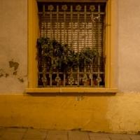 elisebufton_barcelona-1304